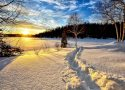 winter-landscape-636634_1920